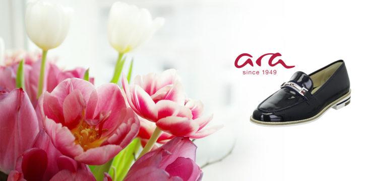 Unsere Ara-Kollektion für Sie!
