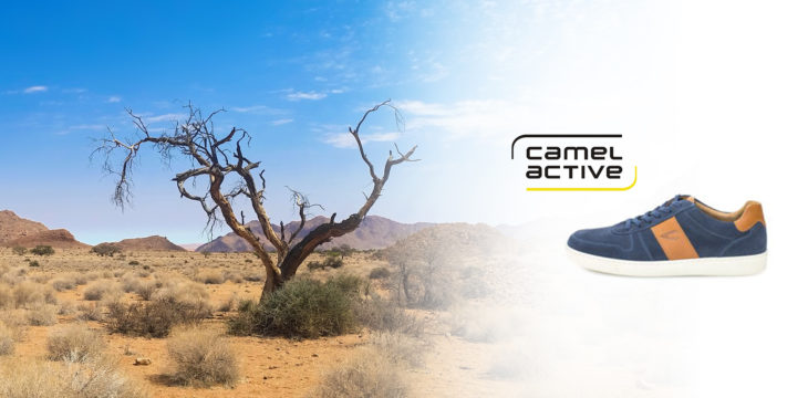 Unsere camel active-Modelle für Sie!