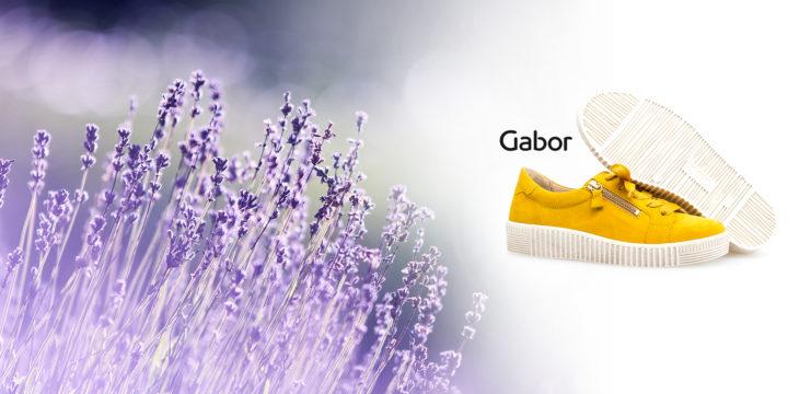 Unsere Gabor-Kollektion für Sie!